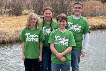 Cedar Busters
