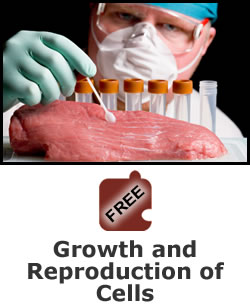 Science of Food Safety: Growth and Reproduction of Cells