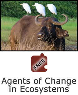 Interdependence of Life: Agents of Change in Ecosystems