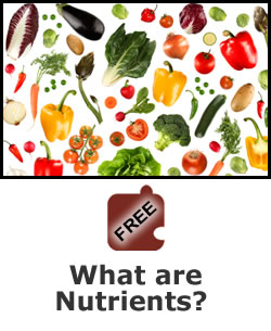 Nutrition: What are Nutrients?