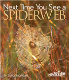 Next Time You See a Spiderweb (Library binding)