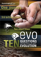 DVD ONLY EVO: Ten Questions Everyone Should Ask About Evolution