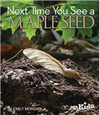 Next Time You See a Maple Seed