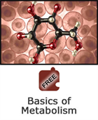 Cells and Chemical Reactions: Basics of Metabolism Science Object