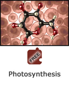 Cells and Chemical Reactions: Photosynthesis Science Object