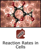 Cells and Chemical Reactions: Reaction Rates in Cells Science Object