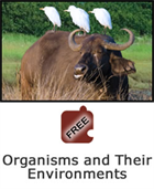 Interdependence of Life: Organisms and Their Environments Science Object