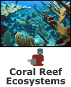 Coral Reef Ecosystems SciPack