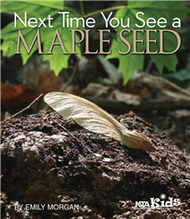 NSTA Science Store :: Next Time You See a Maple Seed :: NSTA